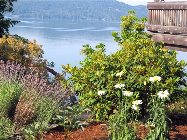 view of gardens and Sooke basin